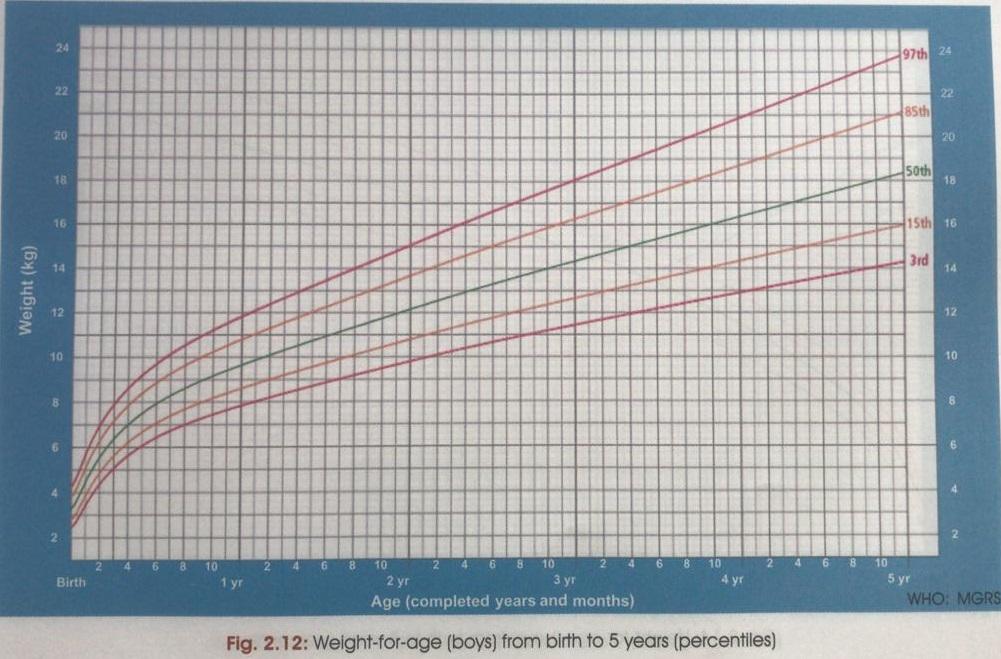 Weight Chart- Boys