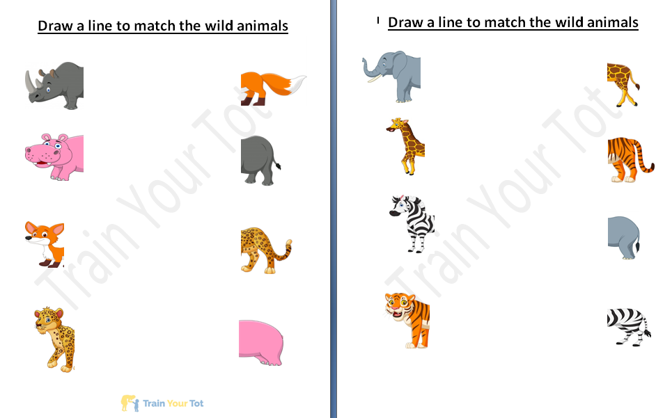 Animal Recognition and matching worksheet